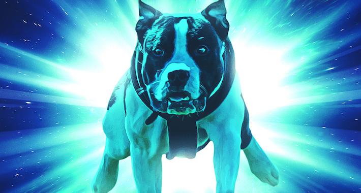 """[Premiere] Annix & Prestige """"The Dog Knows"""""""