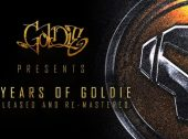 "Goldie Presents Internal Affairs ""Shinin' Down on Me"" [J Majik VIP Remix]"